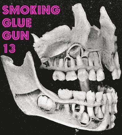 smoking glue gun volume 13